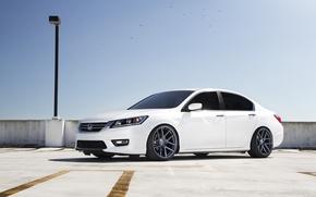 Картинка белая, Honda, Accord, хонда, аккорд, Acura, TSX