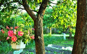 Картинка Зелень, Цветы, Дерево, Деревья, Листья, Ветки, Ствол, Ветви, Листва, Viper, Горшок с Цветами, Цепочка, Яркие ...
