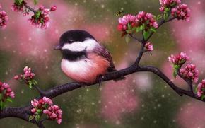 Картинка лето, цветы, пчела, дерево, птица