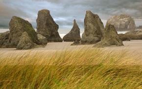 Обои берег, трава, скалы