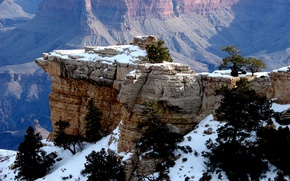 Картинка снег, деревья, горы, скалы, ущелье