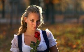 Картинка взгляд, девушка, роза, портрет