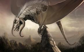 Обои дракон, скалы, крылья, горы
