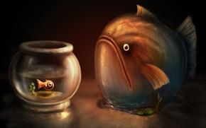 Обои Рыбы, рисунок, аквариум