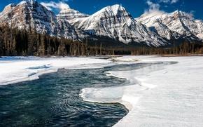 Картинка лед, зима, лес, снег, горы, река, Канада, Alberta, Jasper National Park