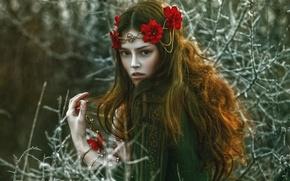 Картинка девушка, фантазия, арт, Agnieszka Lorek, Anna Maria, Beauty of January