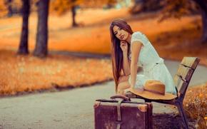 Картинка девушка, парк, чемодан