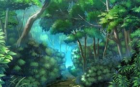 Картинка деревья, тропа, Джунгли, кусты