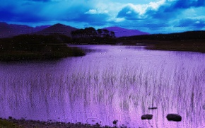 Картинка озеро, берег, цвет