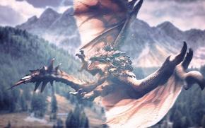 Картинка пейзаж, Драконы, dragons, Dragon's Prophet