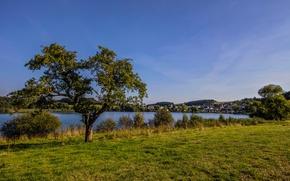 Картинка зелень, небо, трава, деревья, река, берег, дома, Германия, солнечно, Schalkenmehrener