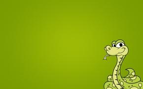 Обои змея, минимализм, зеленый фон