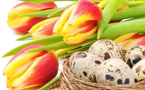 Картинка цветы, праздник, яйца, Пасха, гнездо, тюльпаны, red, yellow, flowers, tulips, Easter, eggs, holiday, bouquet, nest, …