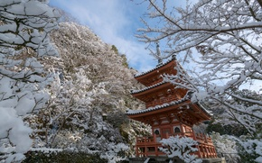 Картинка зима, снег, деревья, ветки, Япония, храм, пагода, Japan, Kyoto, Киото, Mimuroto-ji Temple
