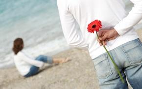 Обои пара, романтика, любовь, пляж, цветок