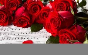 Обои цветы, розы, valentine's day