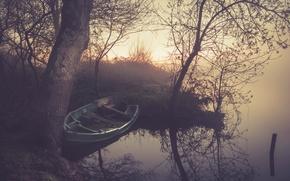 Обои лодка, отражение, ветви, туман, дерево, озеро, зеркало, рассвет