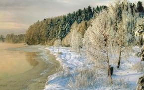 Картинка зима, снег, деревья, природа, река, фото, побережье