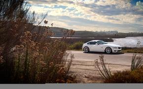 Картинка бмв, BMW, белая, white, кусты, Z4M