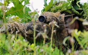 Картинка маскировка, винтовка, трава, прицел, засада, снайпер