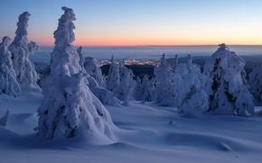 Картинка утро, сугробы, снег, Saxony-Anhalt, Germany, горы Гарц, Германия, деревья, панорама, зима, Harz Mountains, рассвет, Саксония-Анхальт