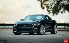 Картинка Mustang, Ford, 5.0, Vossen, flow, (S550), formed, VFS1