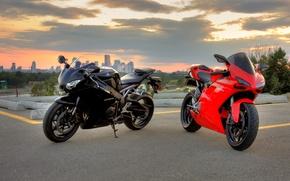 Картинка красный, чёрный, мотоциклы, red, honda, black, bike, хонда, ducati, дукати, 1098, cbr1000rr, сибиар