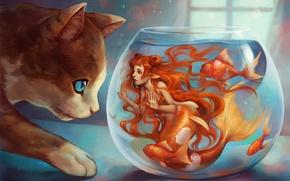 Картинка кот, окно, арт, рыжеволосая, русалка, аквариум, рыбки