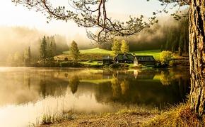 Картинка озеро, дома, утро, деревня