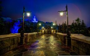 Картинка ночь, замок, Флорида, фонари, USA, США, Диснейленд, Орландо, Orlando, Disneyland, Walt Disney World, Magic Kingdom, ...