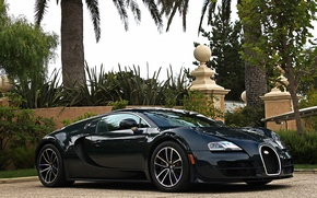 Картинка Bugatti, Veyron, Carbon, Blue, Super, Sport, Edition