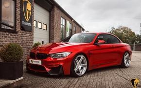 Картинка BMW, Evolution, Line, F82, Akrapovic