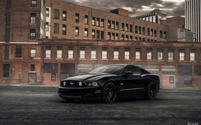 Картинка Ford Mustang, EvoG Photography, Evano Gucciardo, XO Luxury Wheels