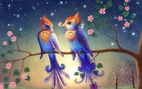 Картинка цветы, птицы, ветка, сердечки