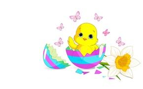 Картинка праздник, яйцо, арт, Пасха, цыплёнок, Easter, цветочек, детская, chick
