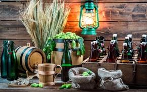 Картинка wheat, хмель, hops, beer, пшеница, бутылки, фонарь, алкоголь