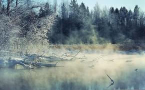 Обои зима, пейзаж, туман, река