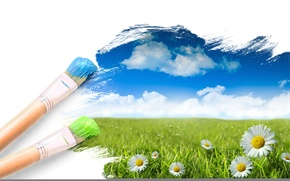 цветы, краски, ромашка, ромашки, поле, поля, арт, креатив, кисточки обои