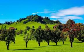 Картинка небо, трава, облака, деревья, холмы, дома