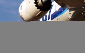 Обои boeing 787, самолёт, авиация, небо