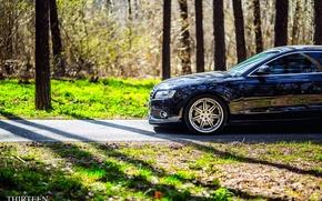 Картинка машина, авто, отражение, Audi, Ауди, фотограф, auto, photography, photographer, Thirteen, Марк Литовкин, A5 Coupe