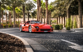 Обои пальмы, суперкар, sports car, дорога, Ferrari F40