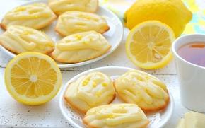 Обои лимон, чай, сладкое, крем, шоколад, мадлены, печенье