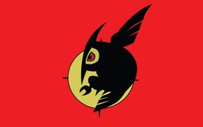 Картинка флаг, Akame ga kill, Night raid, убийца акаме, ночной рейд