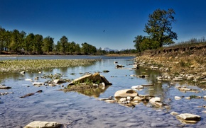 Картинка деревья, река, камни, Канада, Альберта