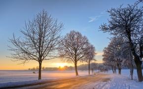Картинка зима, дорога, небо, солнце, облака, снег, деревья, рассвет, голубое, утро, Германия