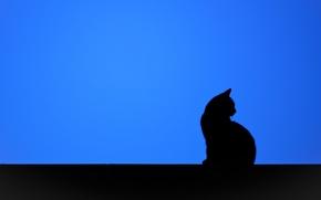 Обои кошка, фон, минимализм, силуэт