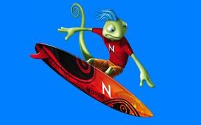 Картинка ящерица, Novell, SUSE Linux geeko, Сёрфер