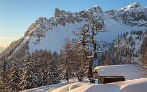 Картинка зима, лес, снег, горы, Австрия, Альпы, домик, Torsten Muehlbacher photography