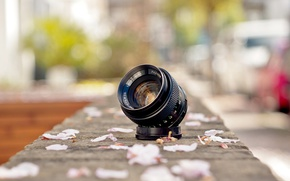 Обои Fujinon, lens, petals, street